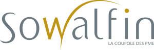logo_sowakfin