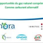 11-06 Opportunités du gaz naturel comprimé comme carburant alternatif
